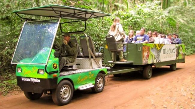 Safari Macuco - Iemanja