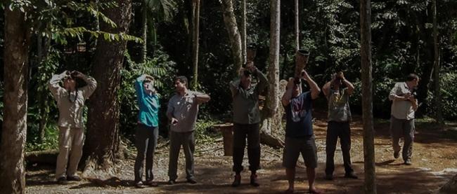 Vivir la Selva - Andresito / Iguazú /  - Iemanja