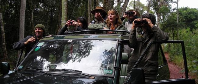 Safari Explorador (ex Safari en la Selva) - Iemanja