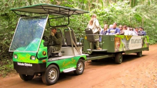 Safari Macuco